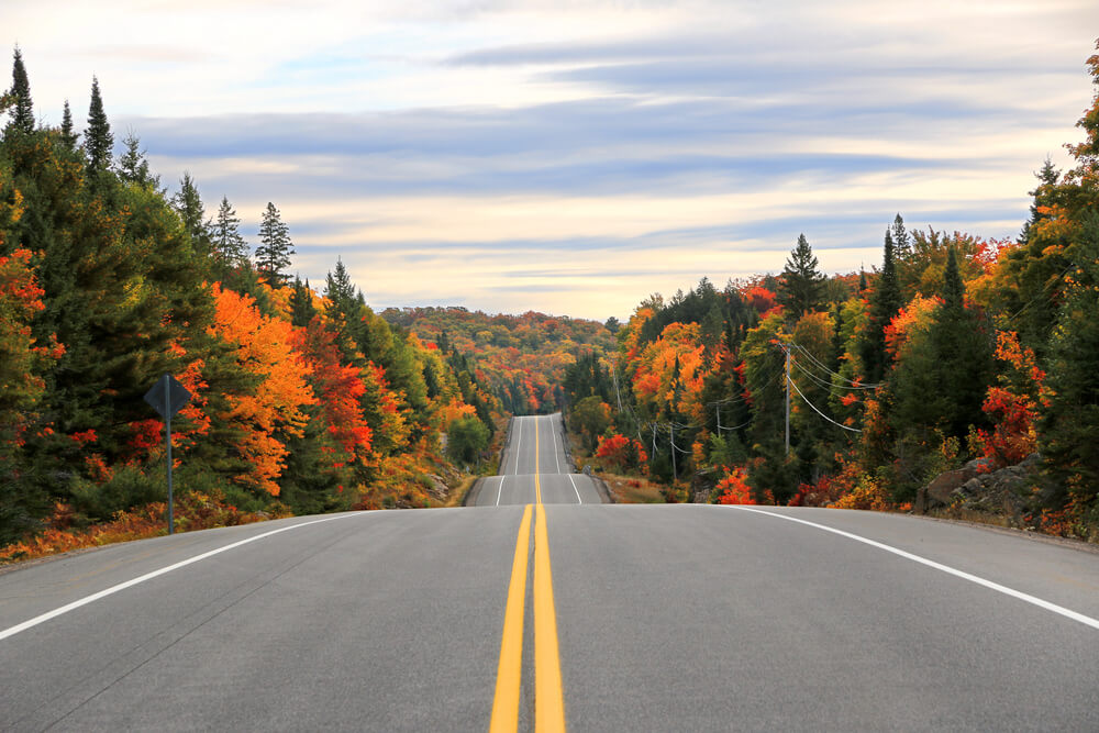Photo of a Winding Road During Fall in Haliburton County.